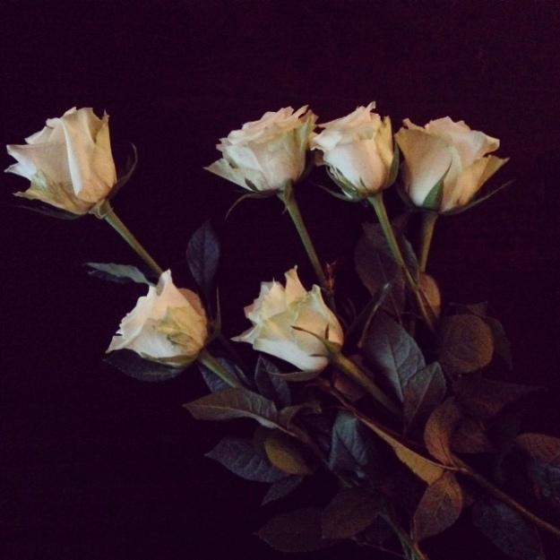white-roses-4
